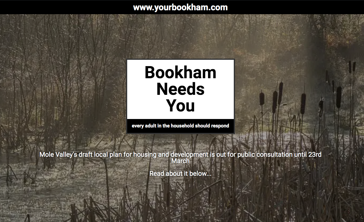 Bookham has most responses in Local Plan consultation